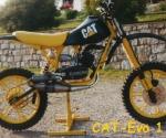 Cat-Evo 1 Baujahr 2001